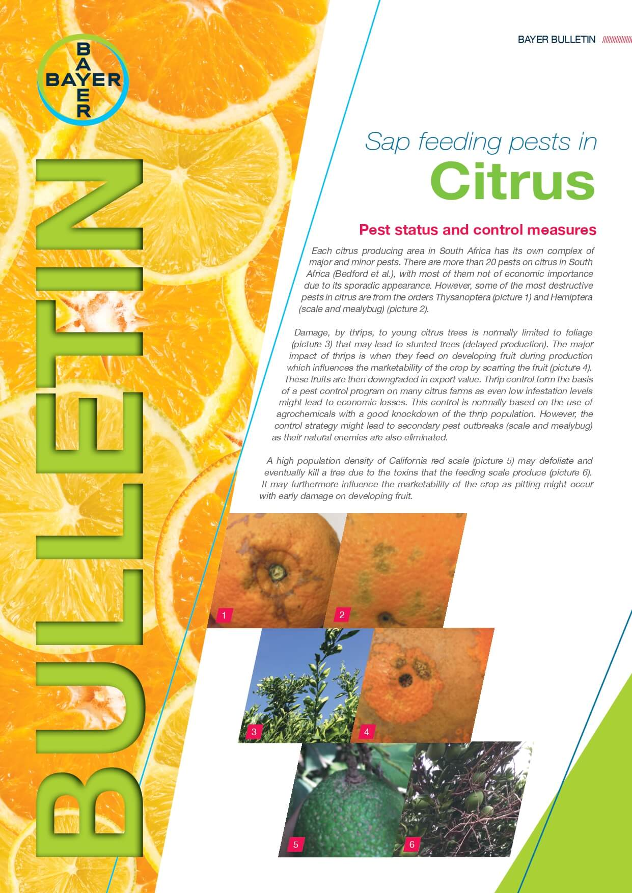 Citrus - Sap Feeding Pests